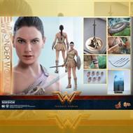Hot Toys Wonder Woman Training MMS424 1/6 MULHER MARAVILHA